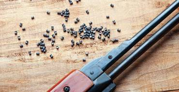 Bar Association seeks ban on use of pellet guns